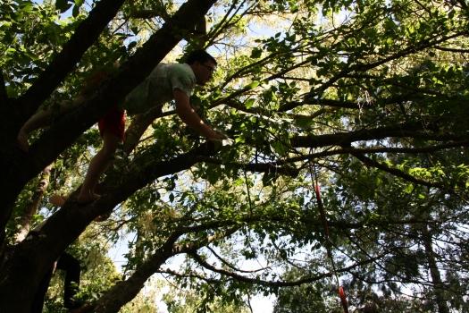 Cam retrieving rope