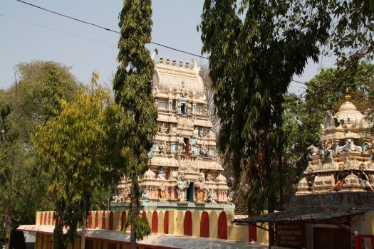 Temple next to Tipu's palace.