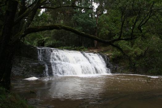 Morwell River Falls