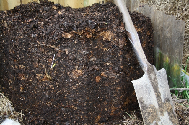 First compost