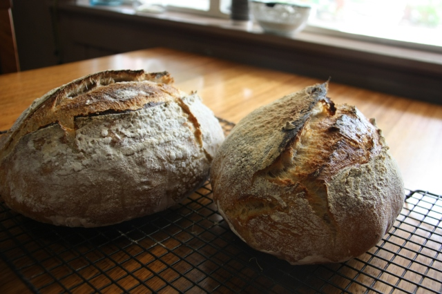 sourdough load ears