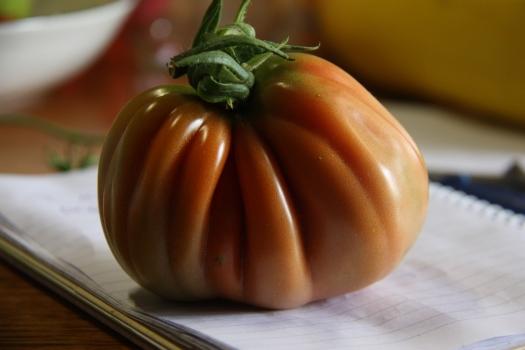 periforme abruzzese tomato