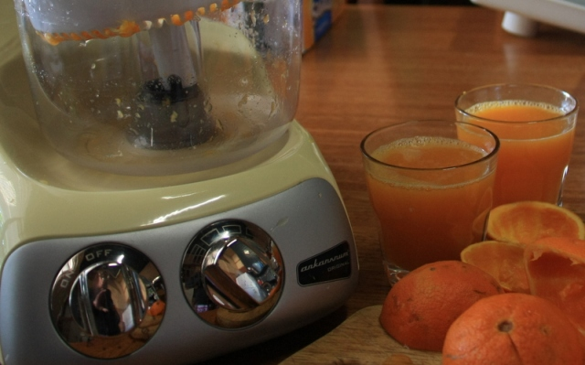Ankarsrum juicer