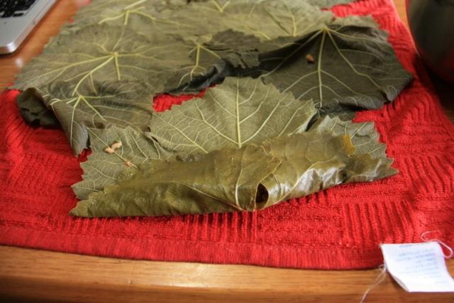 how to fold stuffed vine leaves