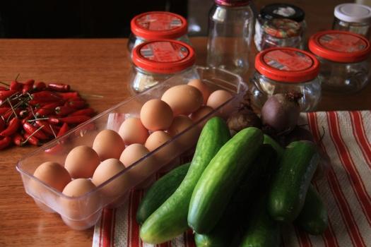 Egg Cucumber Harvest