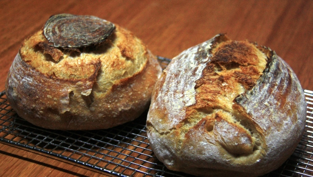 Sourdough loaves using extended autolyse.