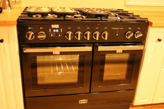 Falcon FX professional oven