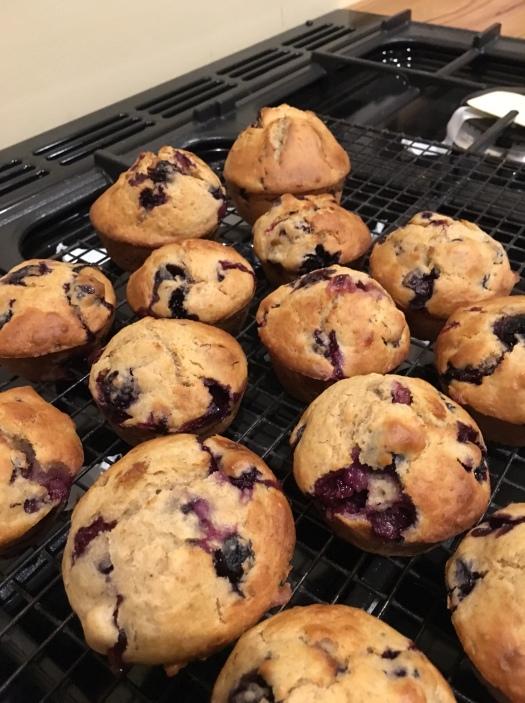 Soudough fruit muffins