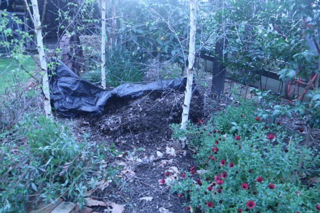 leaf mold compost