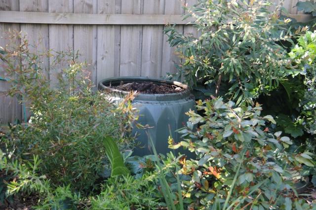 Compost-Geddye bin